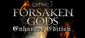 Gothic 3: Forsaken Gods Enhanced Edition